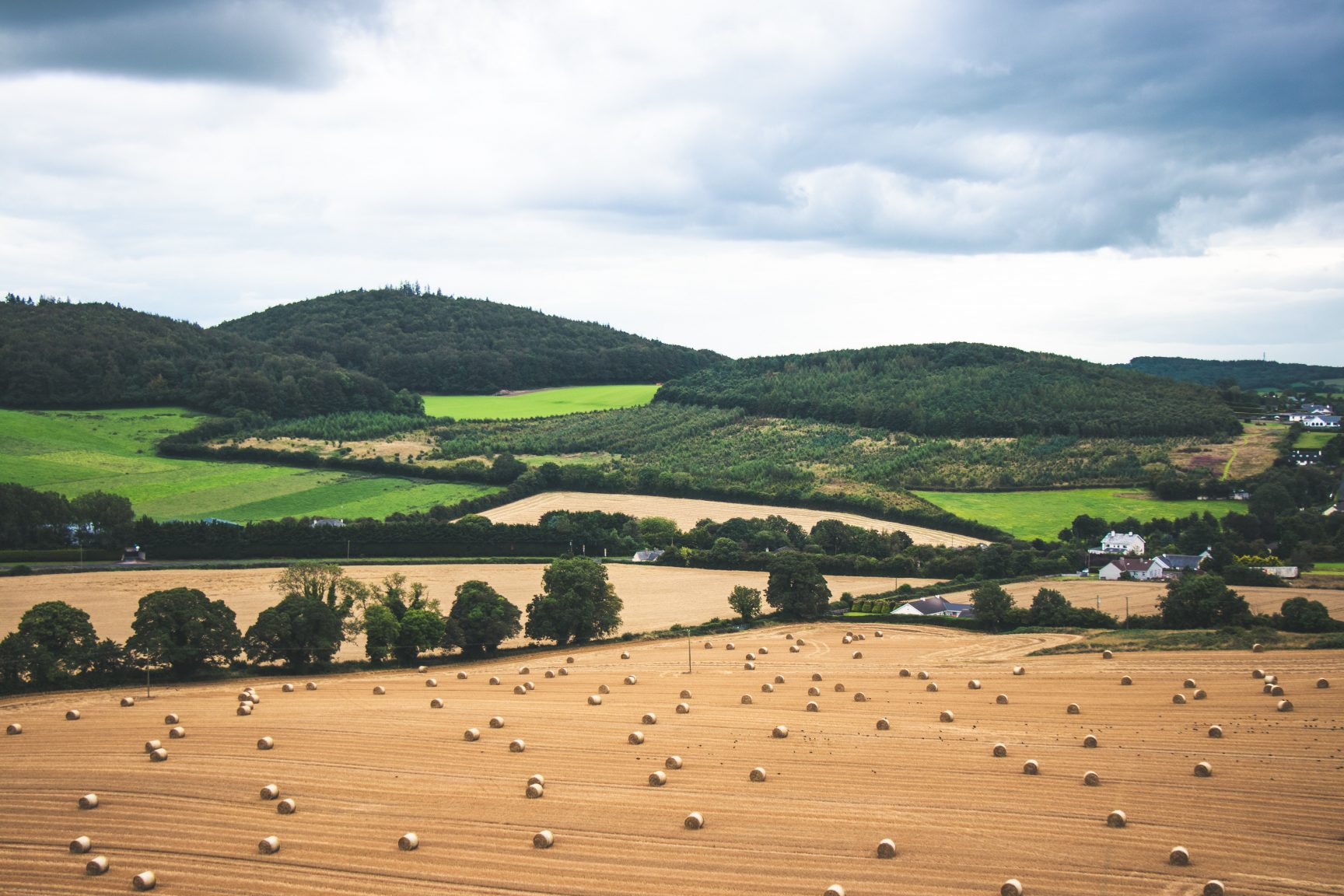 A view of fields. There are hay bails in the closest field, and the others are grassy of filled with trees. There are two houses in the distance.